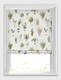 Cacti Ember