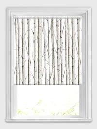 Forest Silver Birch