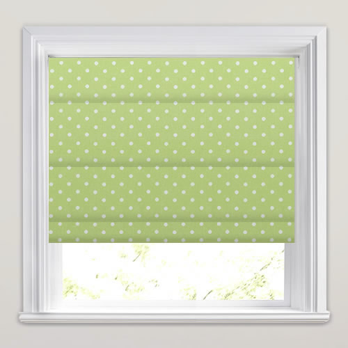 Nancy Acorn Roman Blind