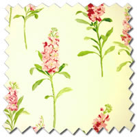 Stocks Chintz