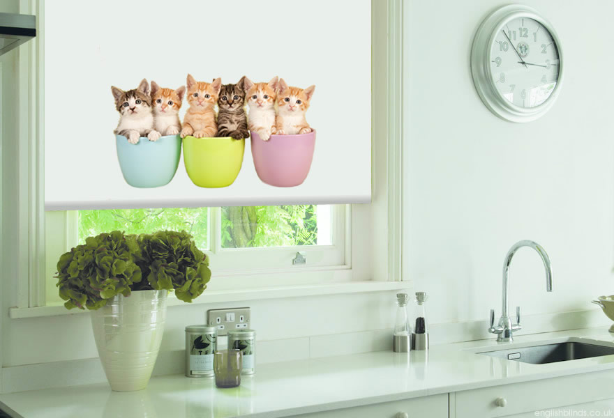 Cup Cats