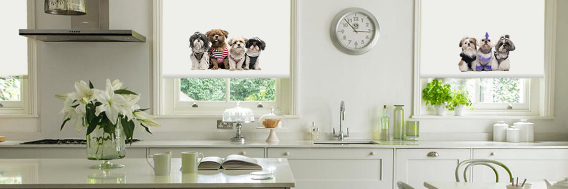 Animal Blinds
